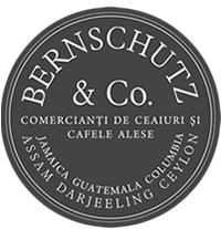 bernschutz-co-logo-1443013349